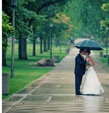дождь на свадьбе молодых